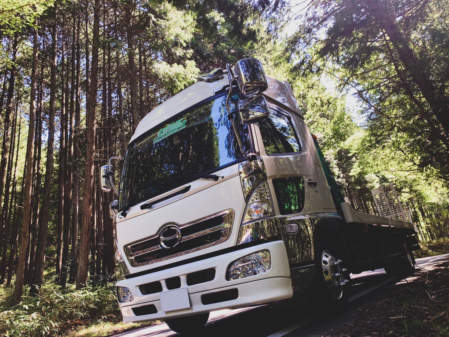 trucklady5_238 b
