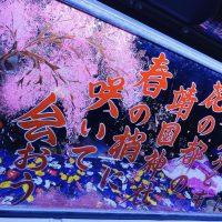 Trucklady5_hisako