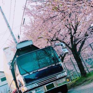 trucklady5_interview_kayochi6